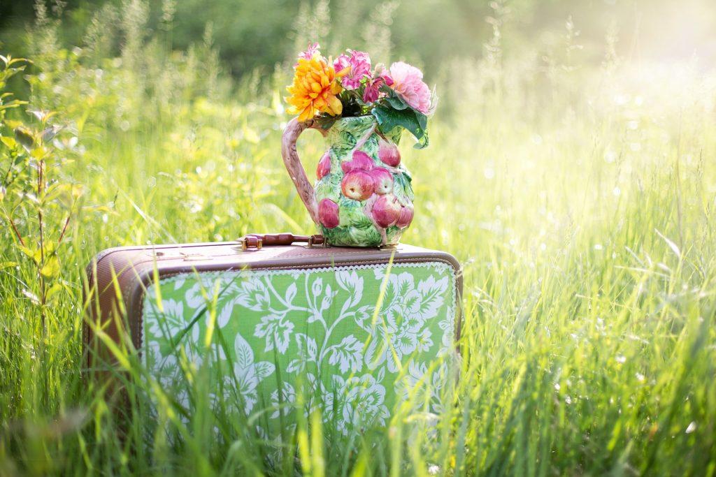 Resväska på en sommaräng