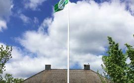 Grön flagga på flaggstång