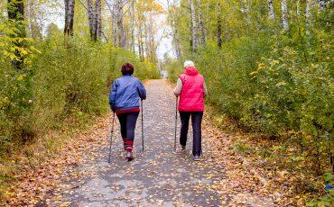 Kvinnor promenerar i en park
