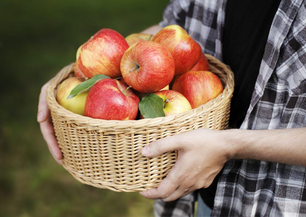 Äpplen i en korg